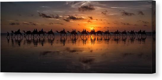 Camels Canvas Print - Sunset Camel Safari by Louise Wolbers