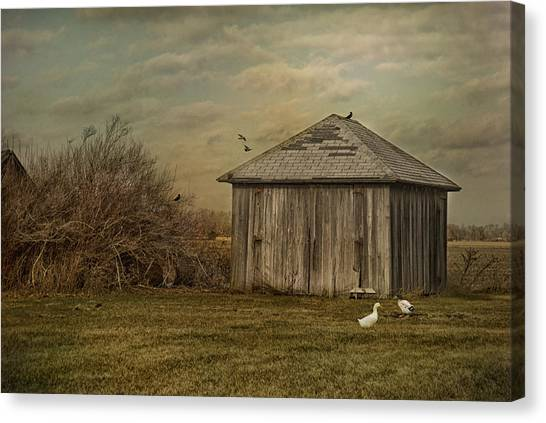 Sunset Farm Canvas Print