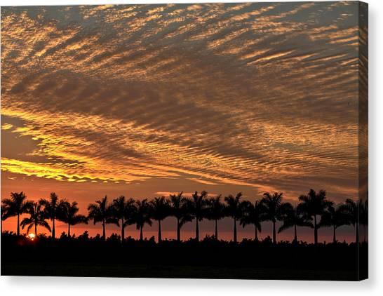 Sunset Florida Canvas Print