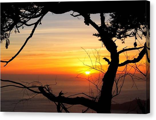 Sunset In A Tree Frame Canvas Print