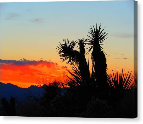 Sunset In Golden Valley Canvas Print