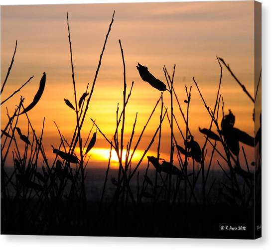 Sunset In Half Moon Bay Canvas Print