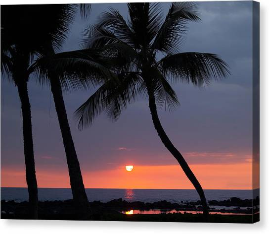 Palm Trees Sunsets Canvas Print - Sunset In Hawaii by Athala Carole Bruckner
