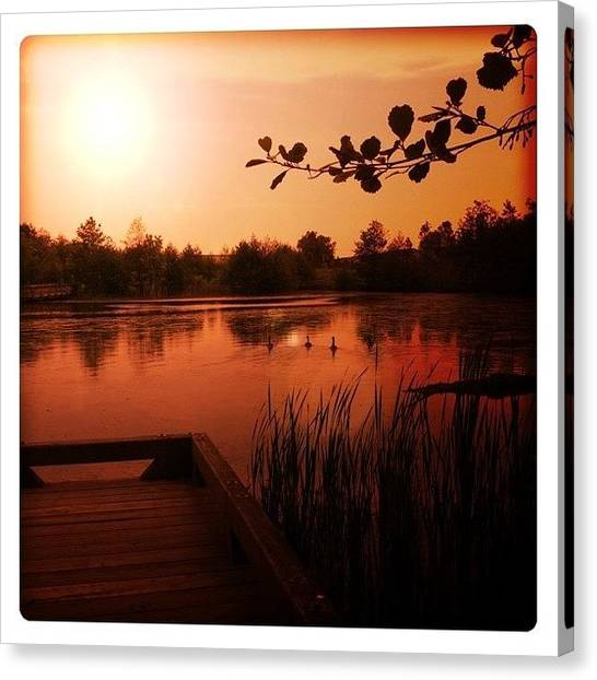 Wetlands Canvas Print - Sunset In Paradise by Stefanie Roberts