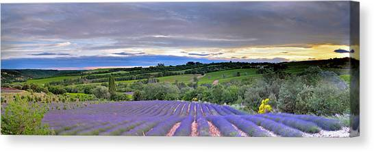 Sunset In Provence Canvas Print