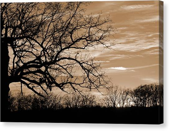 Sunset In Sepia C  Canvas Print