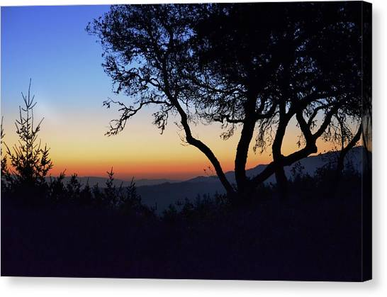 Sunset In Woodside  Canvas Print