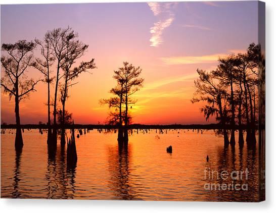 Sunset Lake In Louisiana Canvas Print
