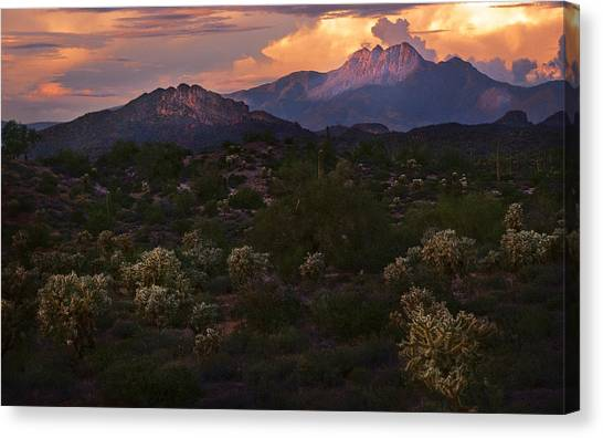Sunset Lit Cactus Over Four Peaks Canvas Print