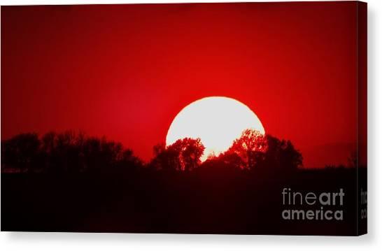Sunset May Canvas Print