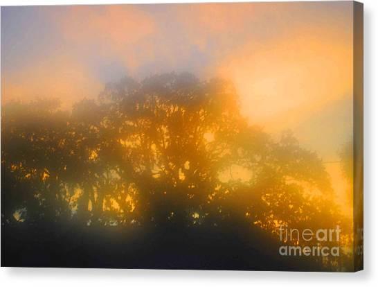 Sunset Mocks Sunrise Canvas Print