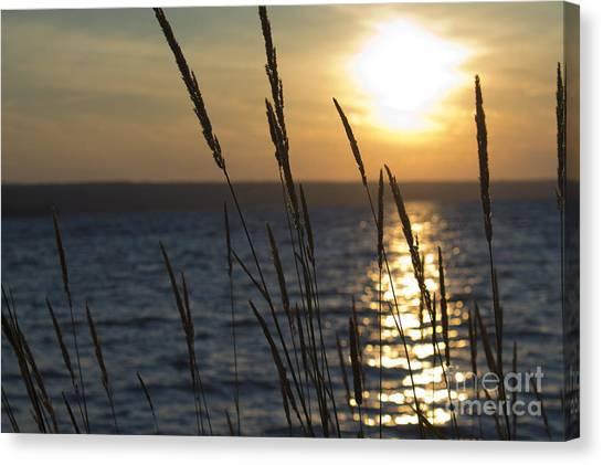 Sunset On Cayuga Lake Canvas Print