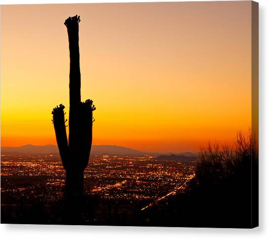 Sunset On Phoenix With Saguaro Cactus Canvas Print