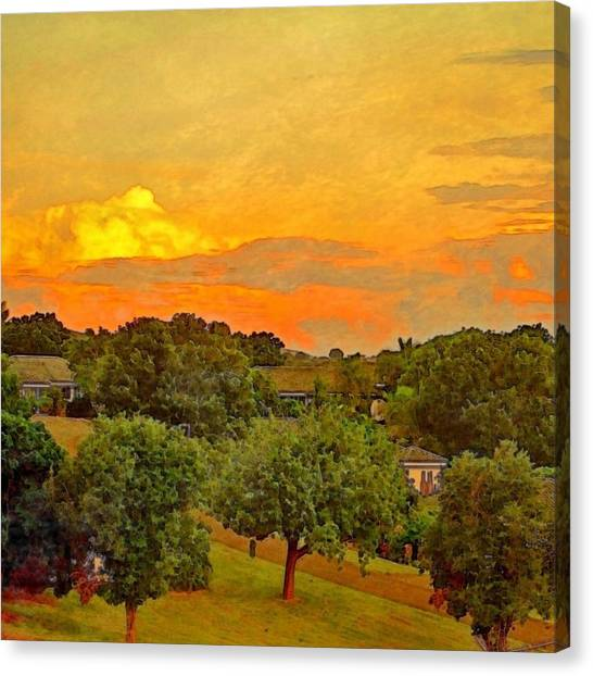 Sunset Over Orchard - Square Canvas Print
