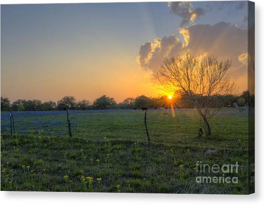 Sunset Over Poteet Texas Canvas Print