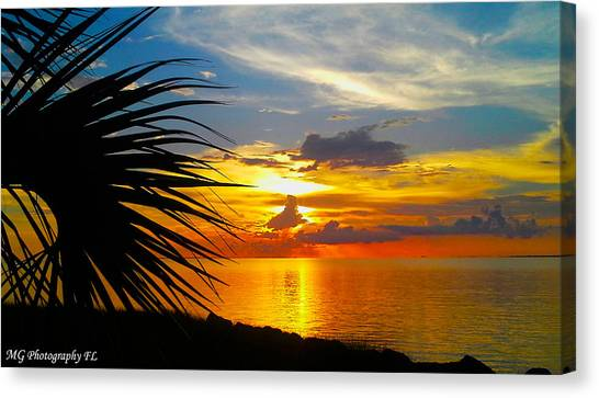 Sunset Palm Canvas Print