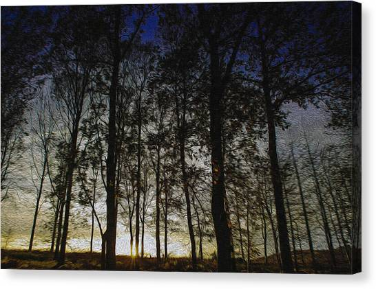 Sunset Canvas Print by Paul Dale