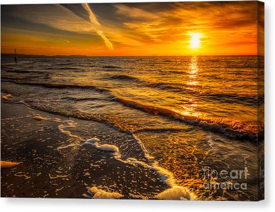 Wind Farms Canvas Print - Sunset Seascape by Adrian Evans