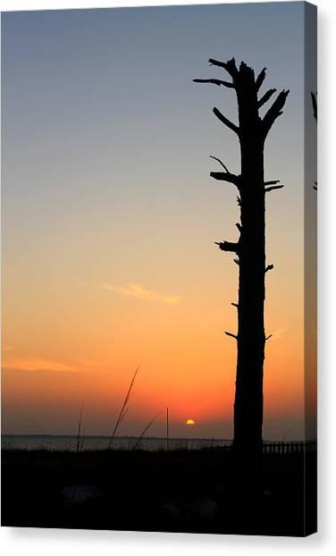 Sunset Silhouette Canvas Print by Saya Studios