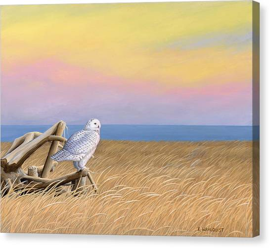 Sunset Snowy Owl Canvas Print by Kirsten Wahlquist