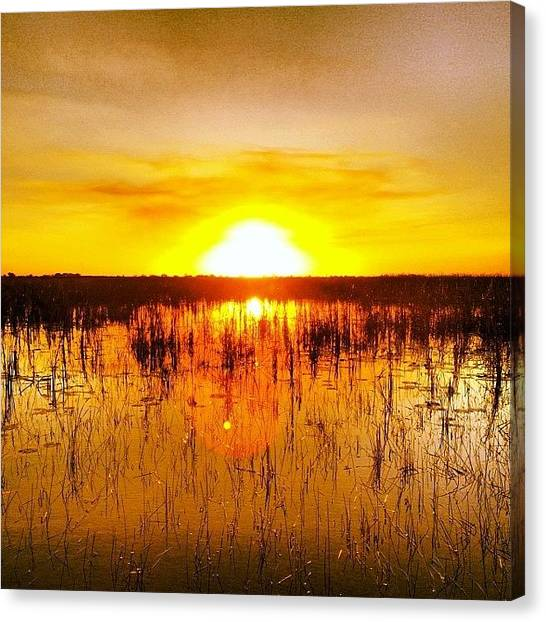 Bayous Canvas Print - #sunset #sunrise #bayou #florida by Eddie Vanderwerff