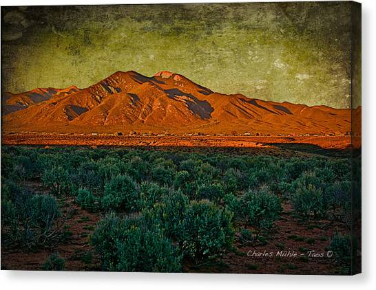 Sunset V Canvas Print