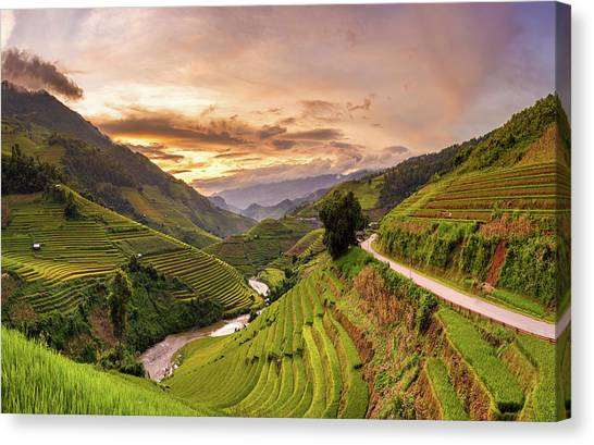 Sunset View Point Of Rice Terrace Canvas Print by Suttipong Sutiratanachai