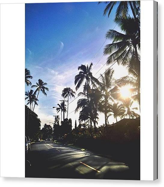 Palm Trees Sunsets Canvas Print - #sunsetsniper • #hawaii • #paradise by Brandon Yamaguchi
