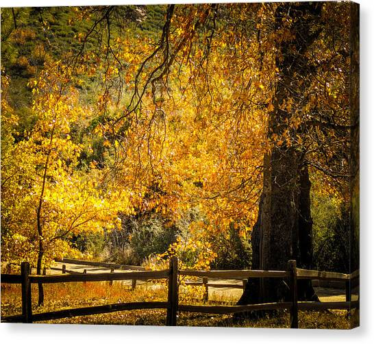Sunshine Hwy Canvas Print