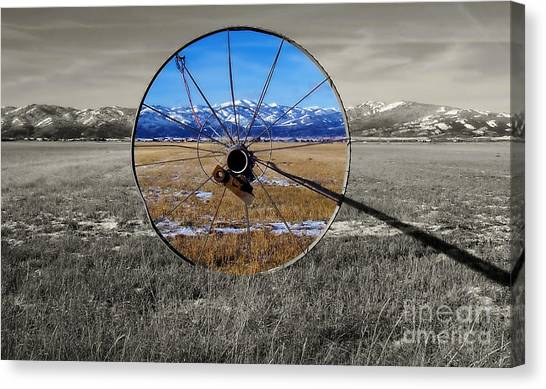 Sunshine On A Gray Day Canvas Print