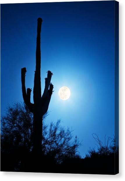 Super Full Moon With Saguaro Cactus In Phoenix Arizona Canvas Print
