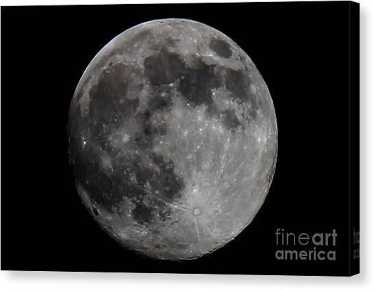 Super Moon 2014 Canvas Print