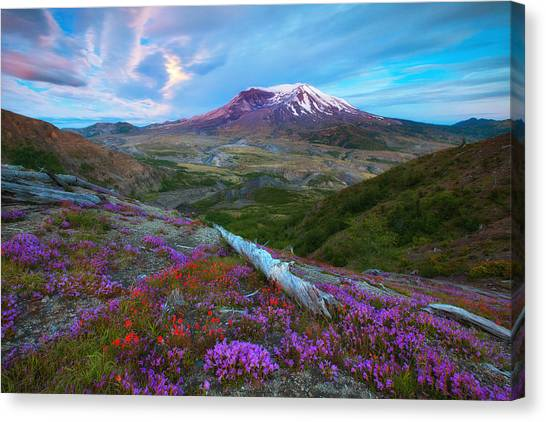 Mount St. Helens Canvas Print - Super Moon Glow by Darren  White