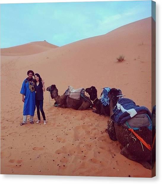 Sahara Desert Canvas Print - Supercalifragilisticexpialidocious!!!!! by Blogatrixx