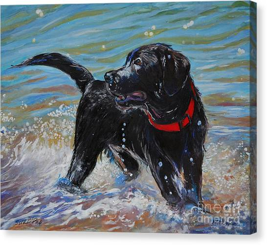 Labrador Retriever Canvas Print - Surf Pup by Molly Poole