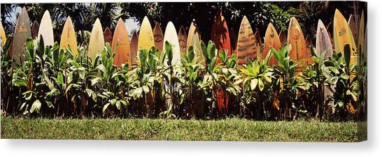 Surfboard Fence Canvas Print - Surfboard Fence In A Garden, Maui by Panoramic Images