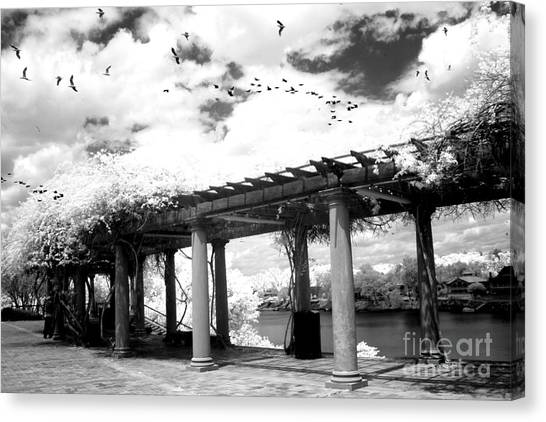 Augusta Canvas Print - Surreal Augusta Georgia Black And White Infrared  - Riverwalk River Front Park Garden   by Kathy Fornal