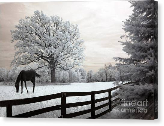 Dreamy Horse Canvas Print - Surreal Dreamy Infrared Trees - Fantasy Infrared Horse Nature Landscape With Fence Post by Kathy Fornal