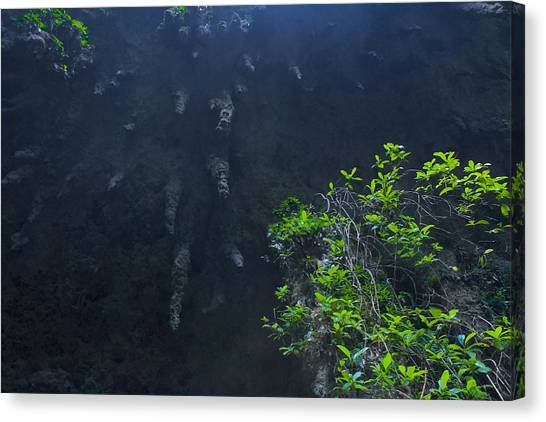 Surreal Stalactites At The Camuy Caverns Canvas Print by Sandra Pena de Ortiz