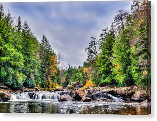Swallow Falls Waterfall In Appalachian Mountains In Autumn Canvas Print