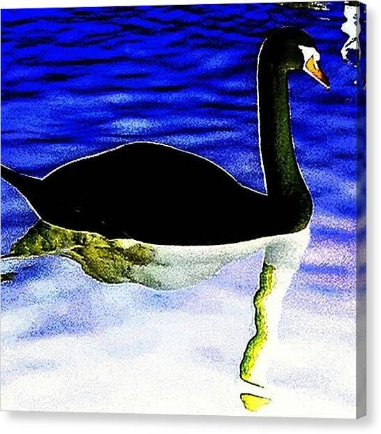 Ballet Canvas Print - Swam Lake 2 - Odile by Urbane Alien