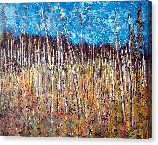 Swamp - Chamcook Nb Canvas Print