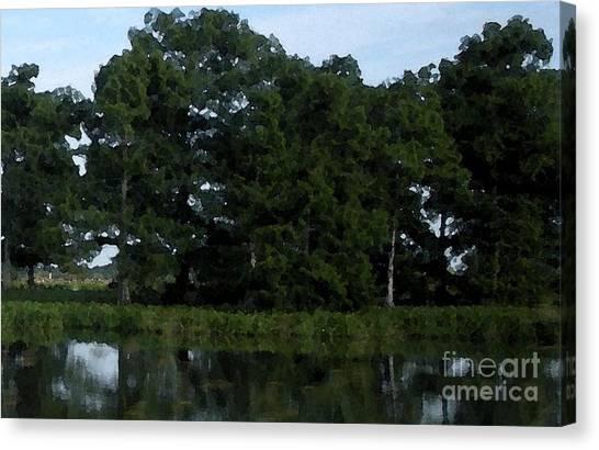 Swamp Cypress Trees Digital Oil Painting Canvas Print