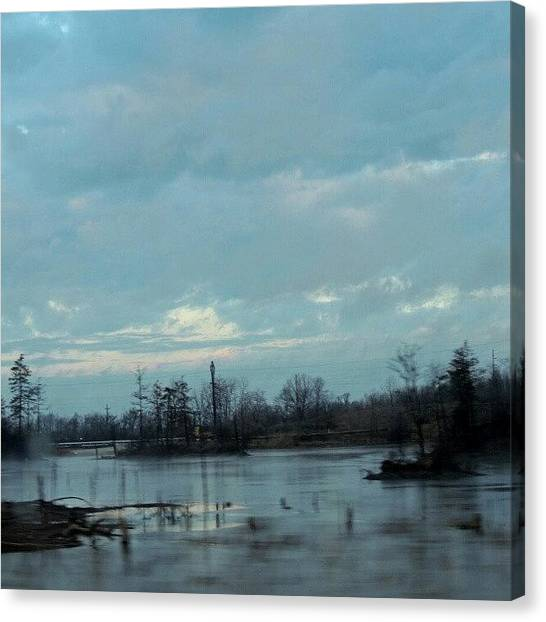 Swamps Canvas Print - Swamp Land by Kelli Stowe