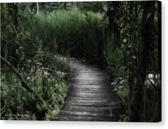 Swamp Walk Canvas Print by Glenn Thompson
