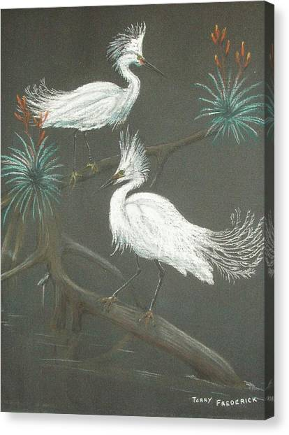 Swampbirds Canvas Print