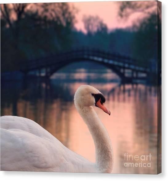 Swan Bridge Canvas Print