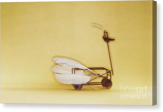 Swan On Wheels Canvas Print