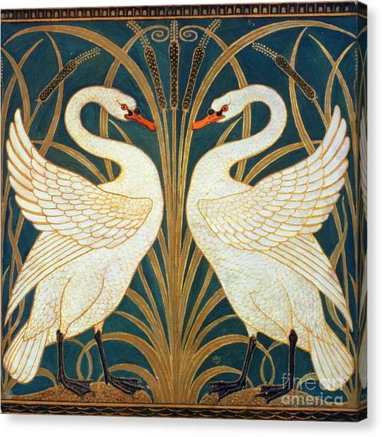 Swan Rush And Iris Canvas Print