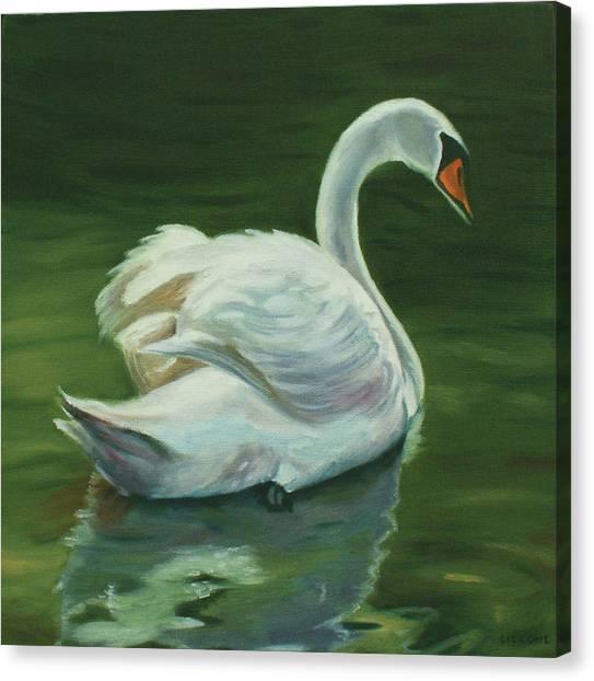 'swanderful Canvas Print
